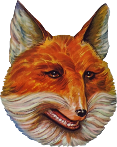 foxpngsm